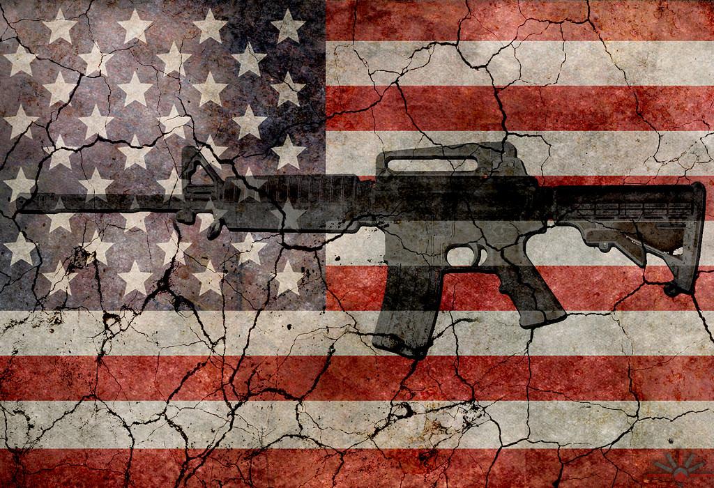 gun debate